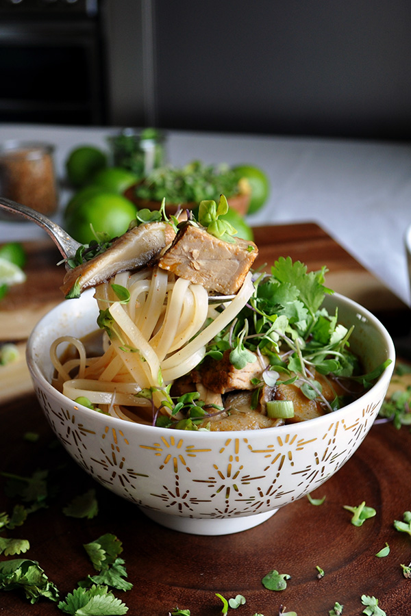 Thai Style Pork Soup with Rice Noodles. Chunks of tender pork, vegetables, and rice noodles are simmered in a rich shiitake mushroom broth that's flavored with lemon grass, cilantro and Thai spices.