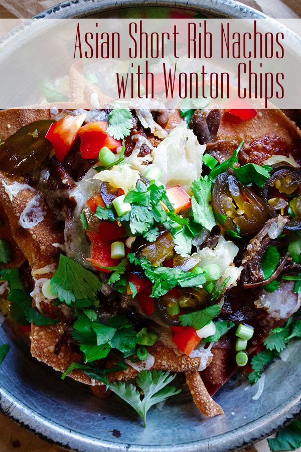 A Plate of Asian Short Rib Nachos with Wonton Chips.